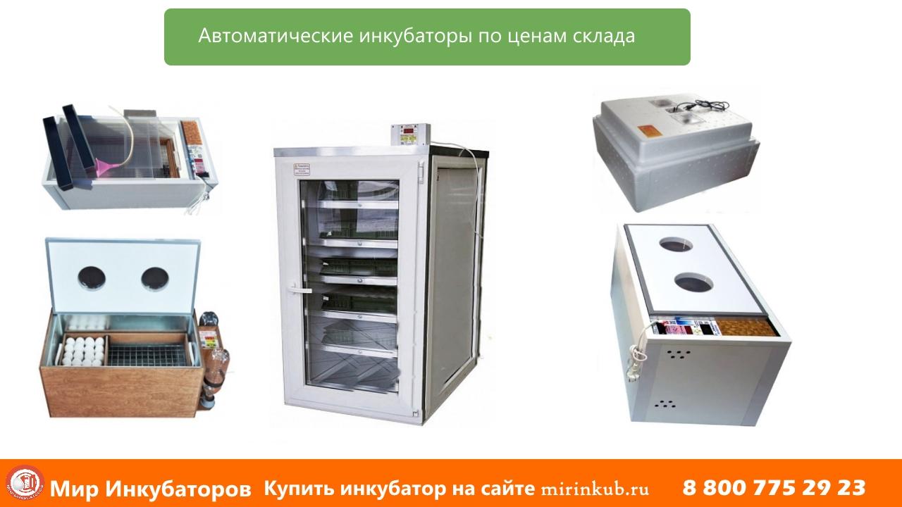 Автоматические инкубаторы по ценам проиизводителя Норма, Блиц ПК, Блиц