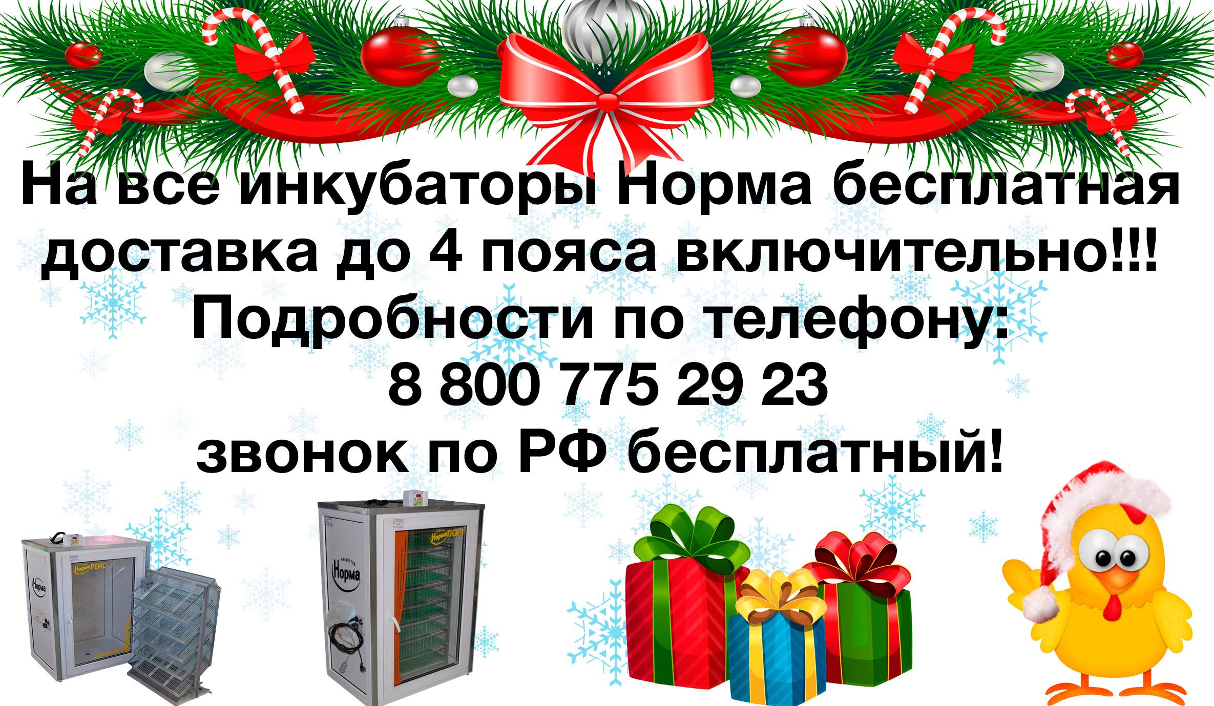 https://mirinkub.ru/images/upload/окончательный%20новогодний%20баннер.jpg