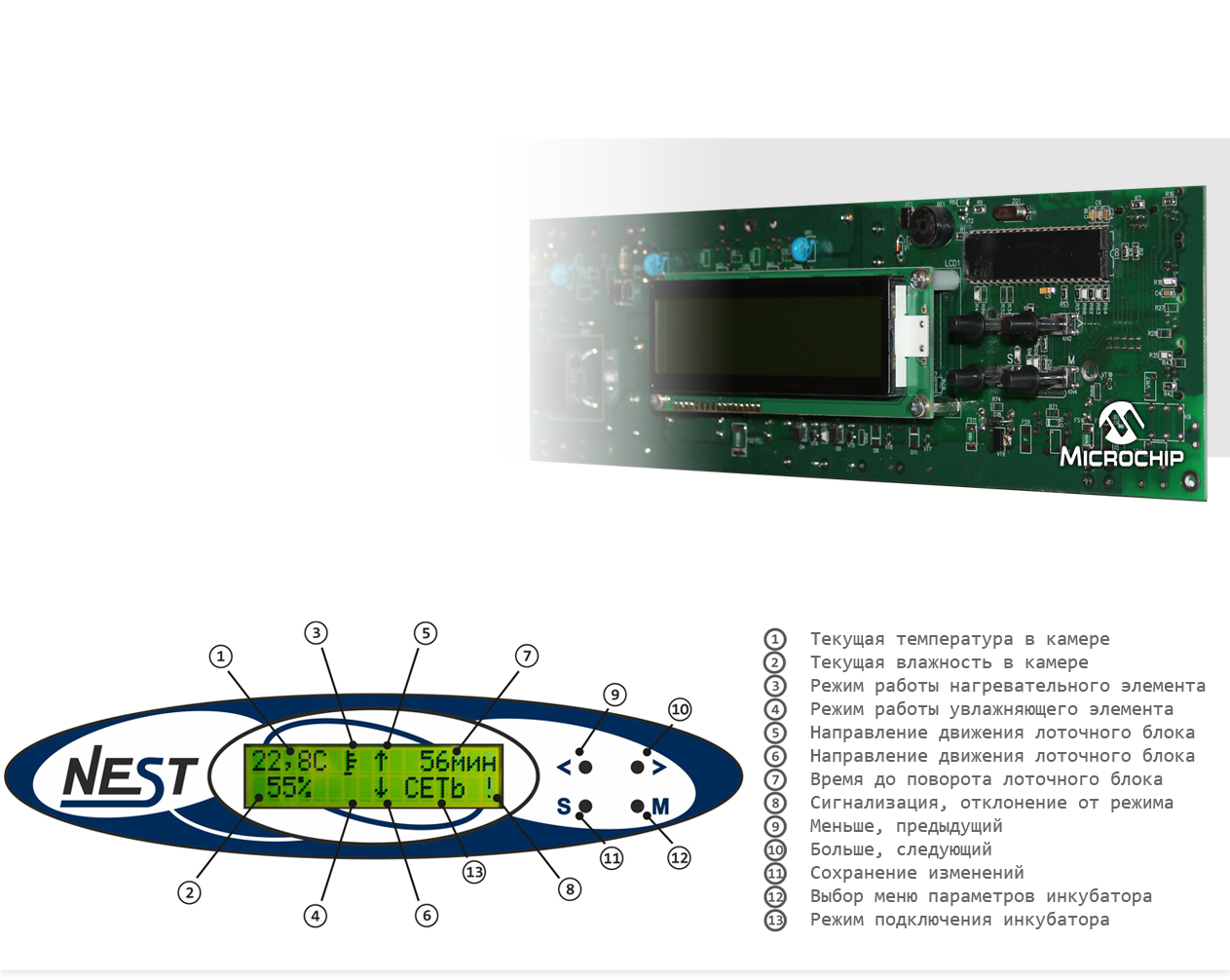 http://купи-инкубатор.рф/images/upload/33-nest-100_2.jpg