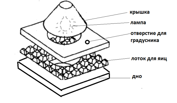схема инкубатора