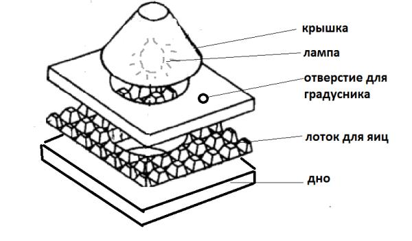 как сделать инкубатор из картонной коробки полная инструкция